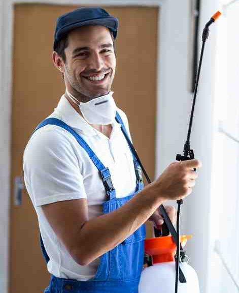 Pest control services for realstate