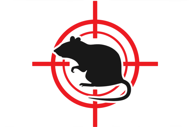 Rats and Mouse Control