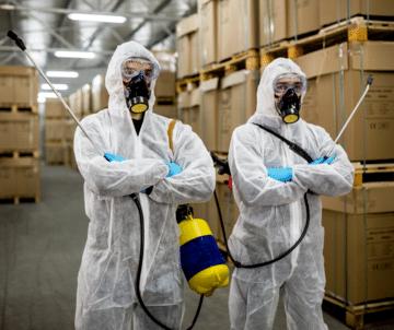 Pest Control Minto