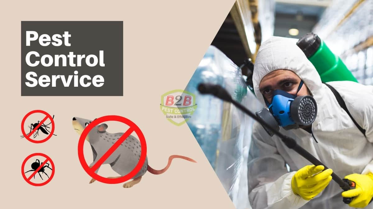 Pest Control Service in Condell Park