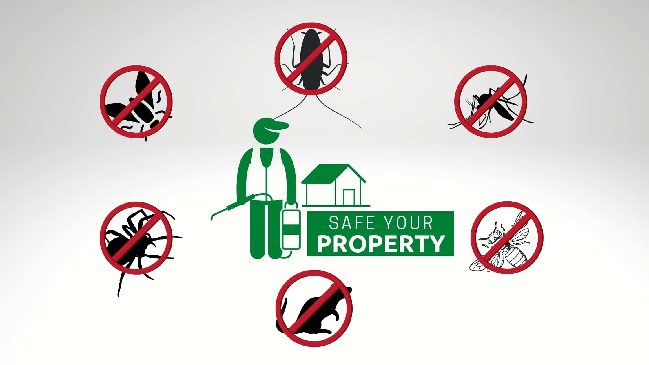 Pest control Service in Mortdale