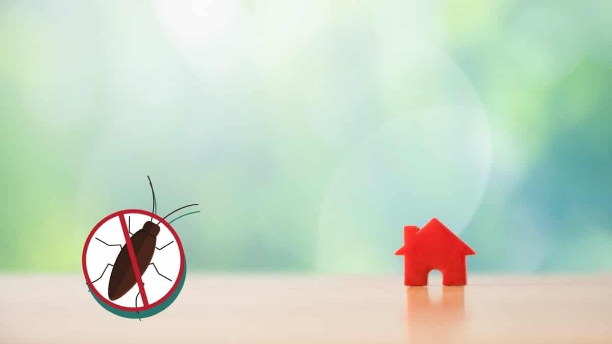 pest control in sydney olympic park