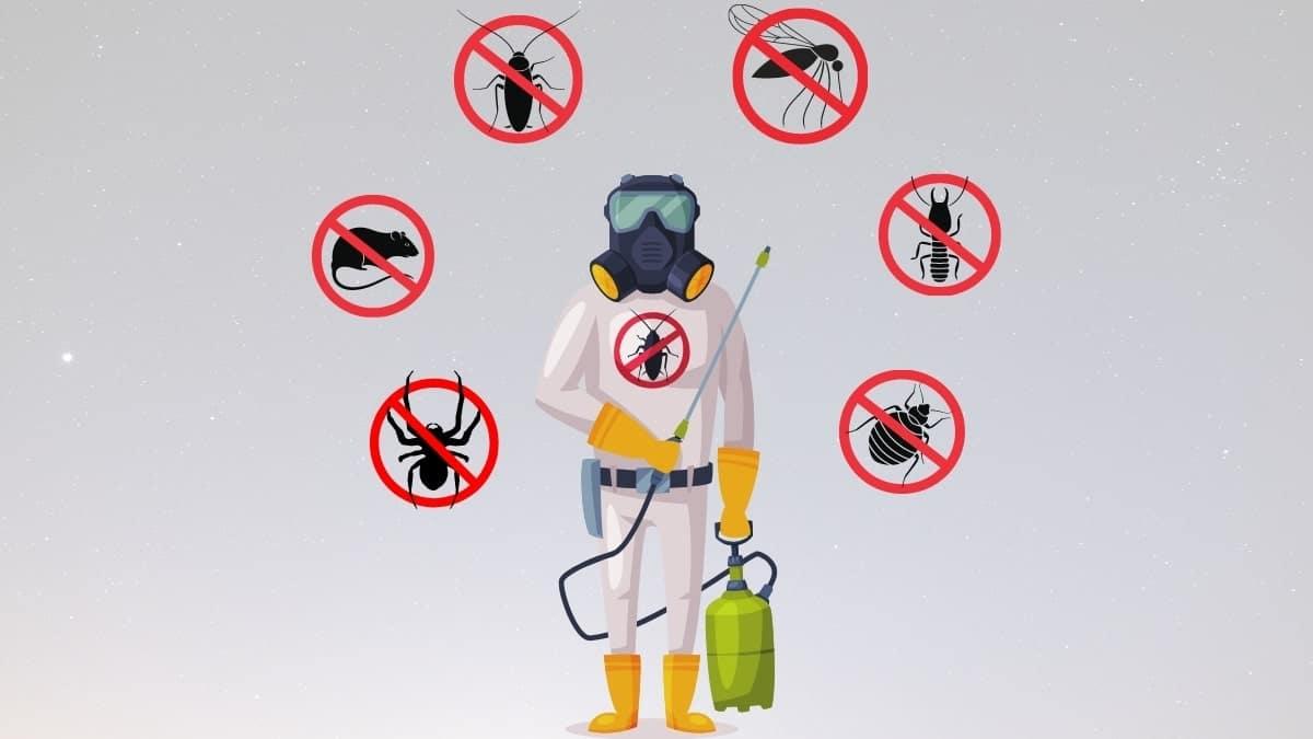 pest control service in campsie
