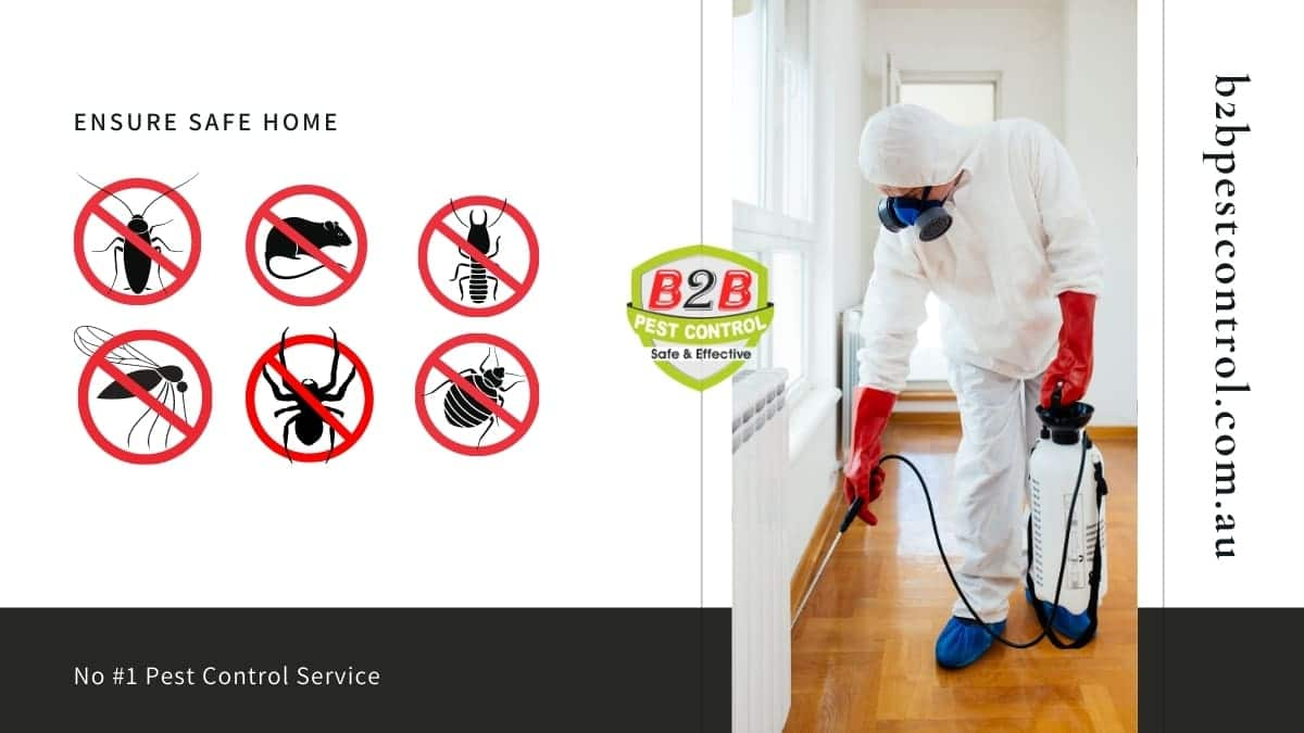 pest control service in revesby
