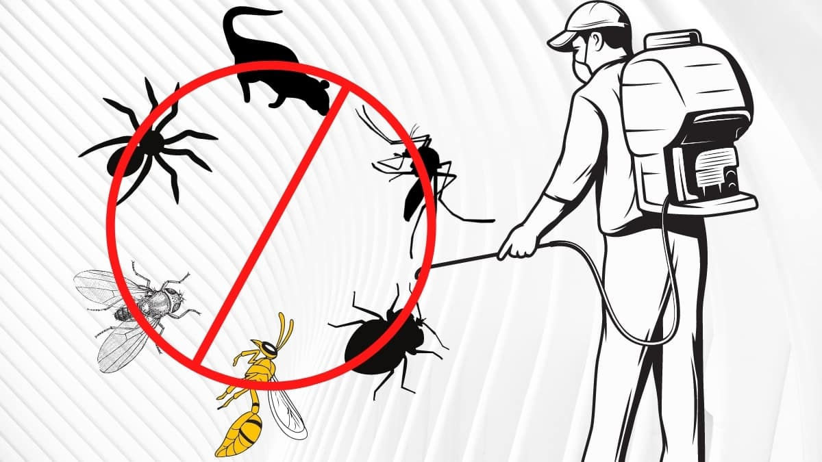 pest control service in yagoona