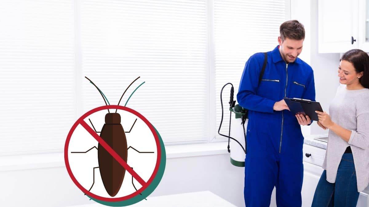 Pest Control In Glenfield