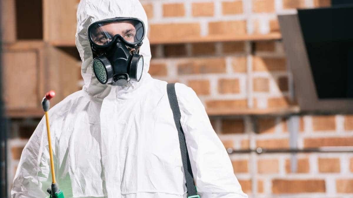 Pest Control Service In Baulkham Hills