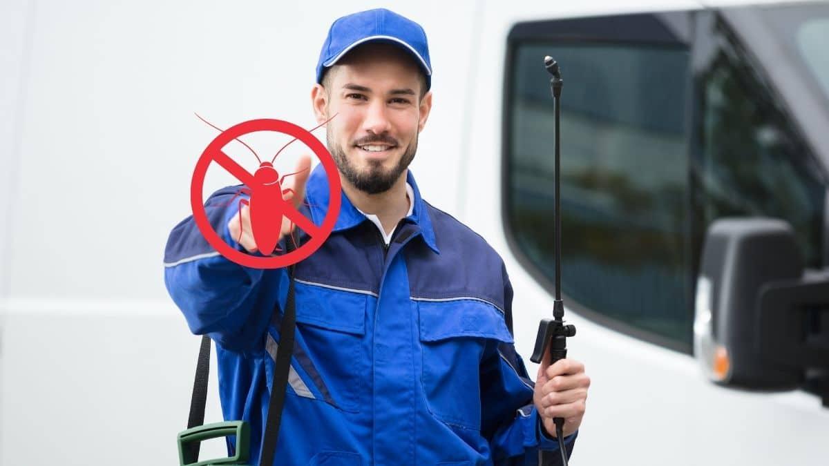 Pest Control Service in Cabramatta
