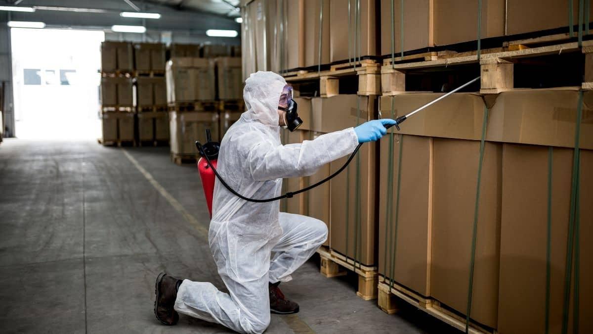 Pest Control Service In Leumeah